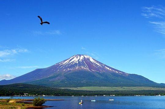 富士と鷹.jpg